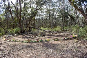Sacred Earth Healing Circle in the Bush